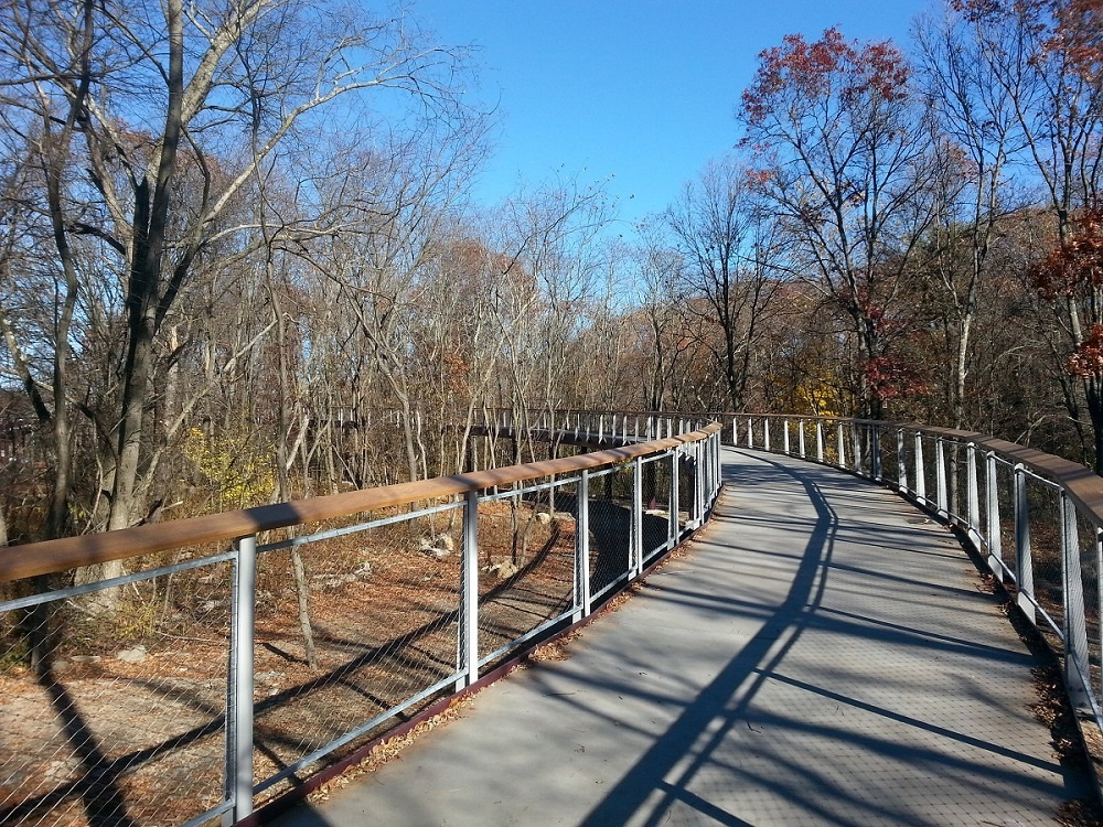9 Completed Canopy Walk.jpg