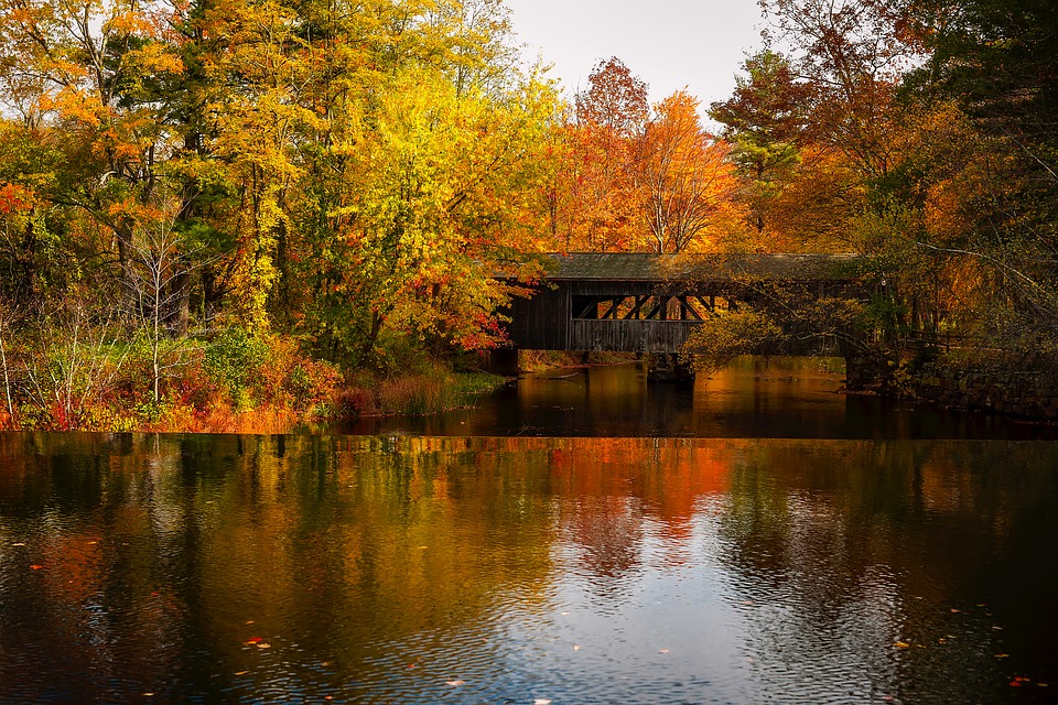 Covered bridge in fall with orange and yellow leaves on trees