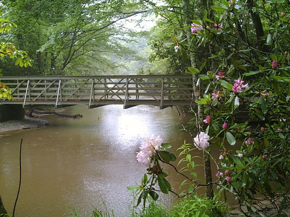 Blue Ridge Pkway North Carolina 35