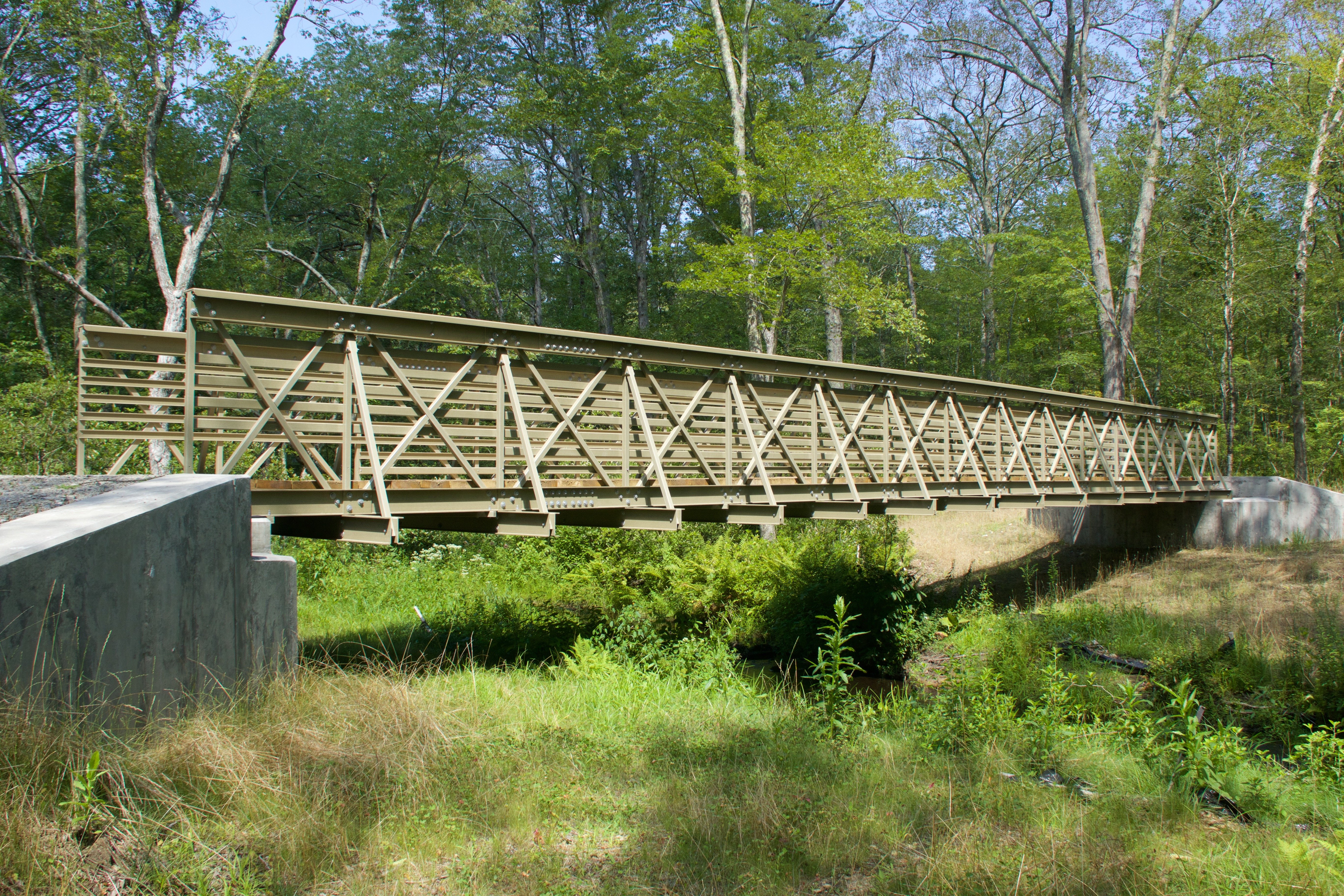 Fiberglass Bridge